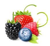 Summer Berry Fruits Isolated Royalty Free Stock Photography