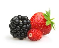 Summer berry fruits. Royalty Free Stock Photos
