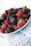 Summer berry selections Stock Photos
