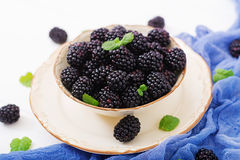 Healthy lifestyle concept, blackberries in bowl. Summer berry on table. Healthy lifestyle concept, blackberries in bowl Royalty Free Stock Photos