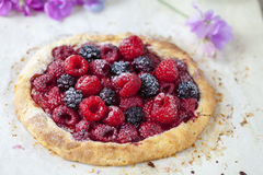 Summer berry tart Stock Image