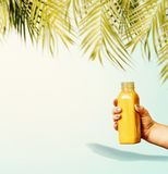 Summer beverages background with tropical palm leaves and yellow drink bottle in female hand at pastel blue background. Front view. Creative minimal layout Stock Images