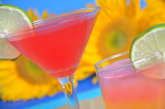 Summer beverages Royalty Free Stock Photography