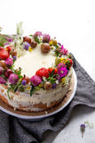 Summer biscuit cake Royalty Free Stock Image