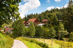 Summer in the Black Forest. Nature landscape in the black forest with some houses in the background stock photo