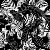 Summer black and white tropical palm tree leaves seamless patter Royalty Free Stock Photo