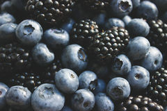 Summer blackberries and blueberries close up Stock Image