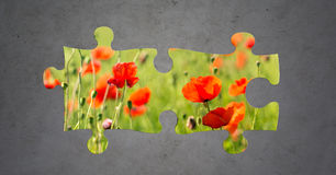 Summer blooming poppy field over gray concrete. Nature, summer, ecology and environment concept - puzzle peaces of blooming poppy field over gray concrete Royalty Free Stock Photo
