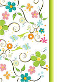 Summer blossom. Flower illustration background Stock Photography