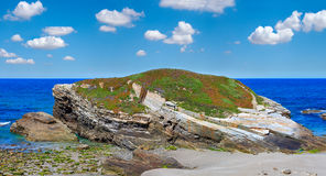 Summer blossoming Atlantic coast Galicia. Royalty Free Stock Image