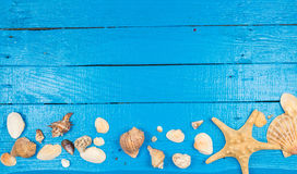 Summer blue background with seashells Stock Images