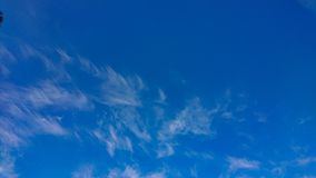 Summer blue skies. A summer blue skies and clouds formation royalty free stock photos