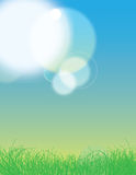 Summer blue sky and green grass abstract sun shini Royalty Free Stock Image