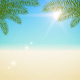 Summer  blurred background with palm leaves Stock Photos