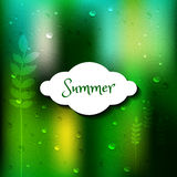 Summer blurred vector background template Stock Images