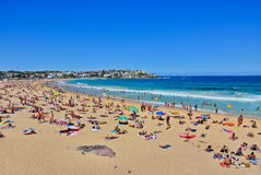 Summer at Bondi Beach, Sydney, Australia. Stock Photos