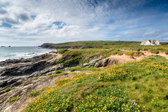 Summer at Boobys Bay in Cornwall Stock Photo