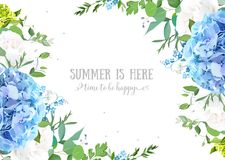 Summer botanical vector design banner. Light blue hydrangea, white rose, forget me not wildflowers, eucalyptus and herbs. Natural card or frame. Floral borders Royalty Free Stock Image
