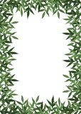 Summer botanical watercolor banner design. Delicate green leaves. Natural card or frame. Floristic borders. Place for your text