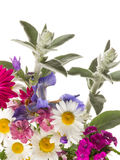Summer bouquet of colorful flowers Stock Images
