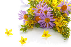Summer bouquet of daisies and loosestrife. On a white background Royalty Free Stock Photos