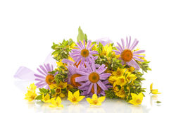 Summer bouquet of daisies and loosestrife Stock Photography