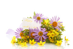 Summer bouquet of daisies and loosestrife Stock Photos