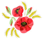 Summer bouquet with red poppies. Summer bouquet with red  poppies and ears Royalty Free Stock Photography