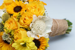 Summer bouquet Stock Images