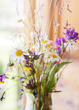 Summer bouquet of wild flower Stock Photos