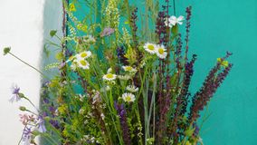 Summer bouquet of wildflowers. Summer bright bouquet of wildflowers Royalty Free Stock Photography