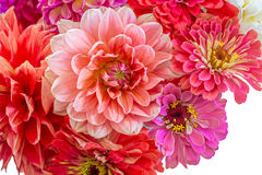 Summer Bouquet Stock Photo