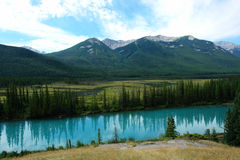 Summer bow valley stock image