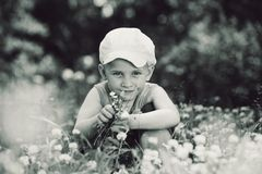 Summer boy among the clover Royalty Free Stock Image