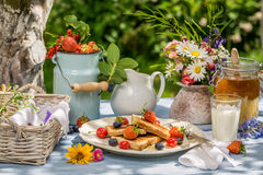 Summer breakfast in the garden Royalty Free Stock Photography