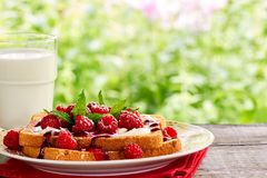 Sunmmer outdoor breakfast with toast and milk Royalty Free Stock Photo