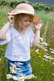 little girl in wild daisy field Royalty Free Stock Photos