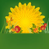 Summer bright background stock illustration