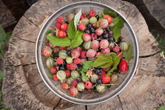 Summer bright berries  top view. Royalty Free Stock Image
