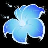 Summer bright flower. Beautiful summer bright flower on a black background Vector Illustration