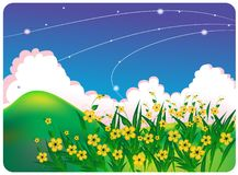 Summer bright landscape with flowers Royalty Free Stock Image