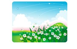 Summer bright landscape with white flowers Royalty Free Stock Image