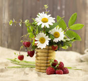 Summer bunch Royalty Free Stock Photography