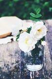 Summer bunch of white wild roses on a garden table Stock Photos