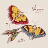 Summer butterflies card Royalty Free Stock Photos