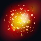 Summer butterflies fly to light, yellow insects on Royalty Free Stock Photos