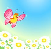 Summer Butterfly Stock Photo