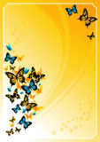 Summer_butterfly_frame Stock Photos