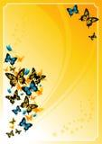 Summer_butterfly_frame Stock Photos
