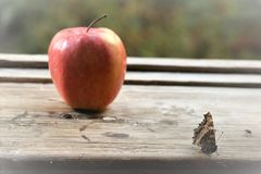 Background. Summer. Butterfly next to a red apple on a window sill near an open window. Summer. Butterfly next to a red apple on a window sill near an open Royalty Free Stock Image